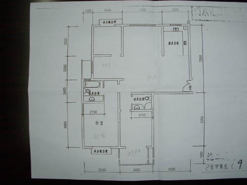 帮朋友咨询个房子,有户型图求设计图.