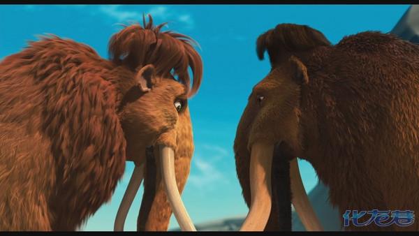 动物世界一片歌舞升平