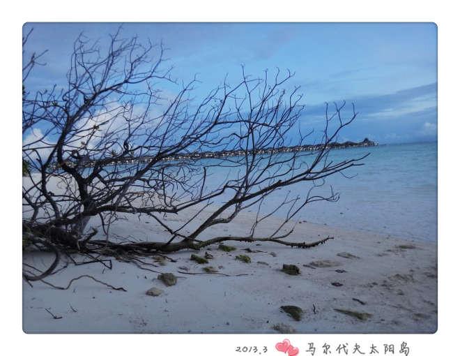 社区导航 谈婚论嫁 马尔代夫 太阳岛 我的蜜月之旅 如果一辈子只有