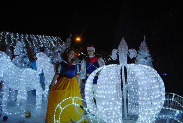 魔幻圣诞树-美丽公主-炫彩花灯-圣诞老人送礼物!