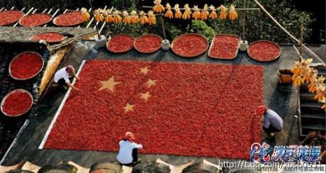 江西婺源大妈用辣椒拼出五星红旗,浓浓中国情.大妈们都是人才啊.